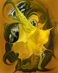 Angels trumpet icon.jpg - 21824 Bytes